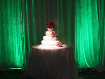 Criswell-Merrilees-Wedding-IMG_8711